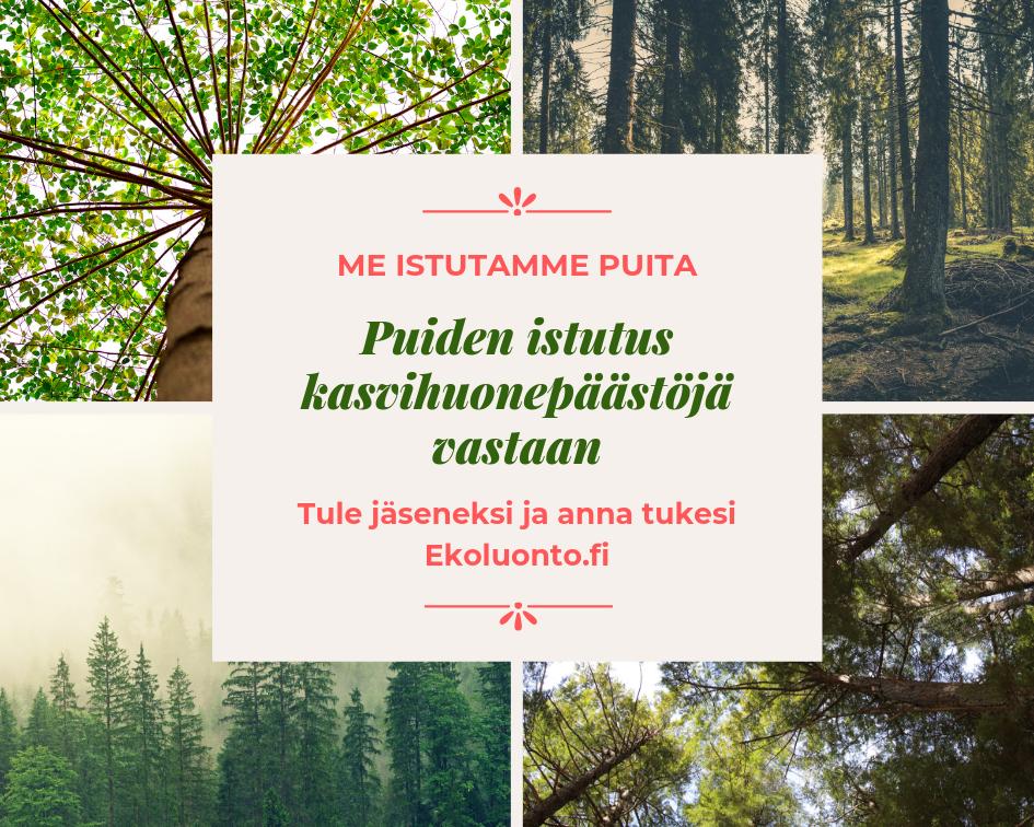 Me istutamme puita. Puiden istutus kasvihuonepäästöjä vastaan. Tule jäseneksi ja anna tukesi: Ekoluonto.fi