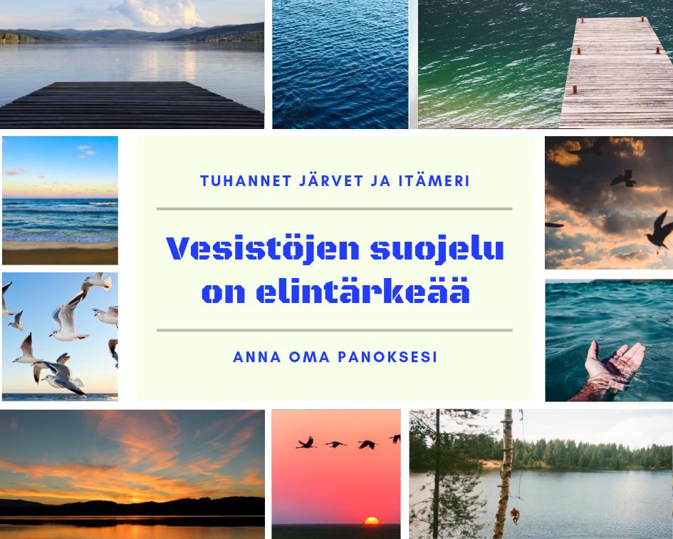 Vesistöt | ekoluonto.fi